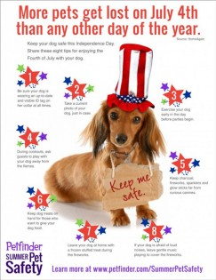 Keep Your Pets Safe on 4th of July
