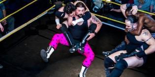 WrestlingView
