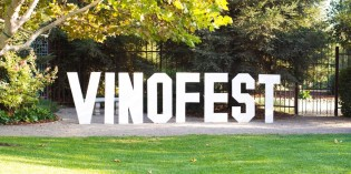 First Annual VinoFest 2015 a Success