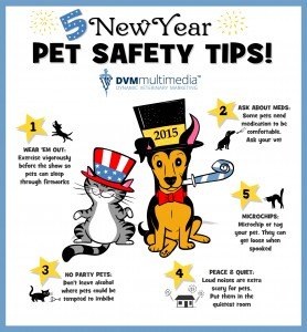Pet Safty New Year