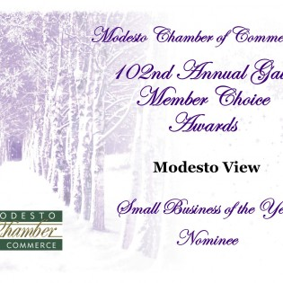 ModestoView Nominated Small Business of Year