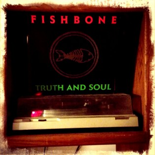 Weekend Needle Drop FISHBONE