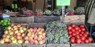 Local Fruit Stands
