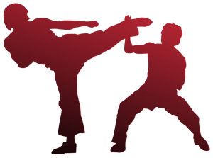 karate-971341_960_720