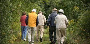 Free Seniors Walking Program starts February 6