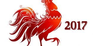 ZenView – Year of the Rooster