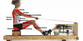 FitView – Row Row Row Your Body