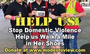 WalkAMileView – Help Us Stop Domestic Violence