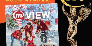 ModestoView Wins Gold!