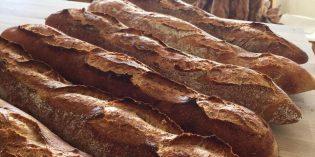 FoodView – Alchemy Bread