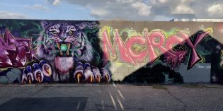 BargainView – Roaring into 2020!